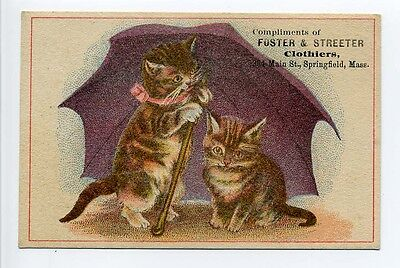 Antique Trade Card 2 kittens umbrella Foster & Streeter clothiers Springfield MA