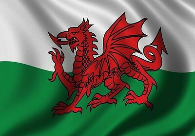 5ft x 3ft LARGE POLY WALES WELSH NATIONAL FLAG ALL WEATHER EYELET St David's Day