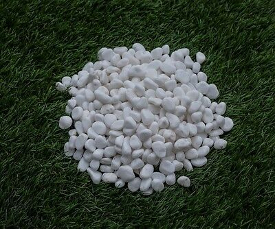 Snow White Pebbles Landscaping Stones Home Garden Path Decoration 10kg 10-12mm