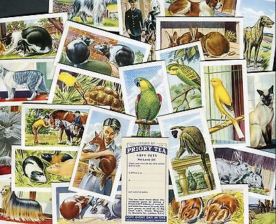 "Priory Tea 1957 Set Of 24 ""pets"" Tea Cards"