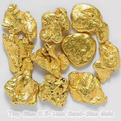10 pcs Alaska Natural Gold Nuggets - Alaskan Gold - TVs Gold Rush (#G0.5)