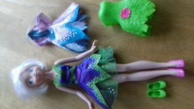 disney fairies doll and accessories