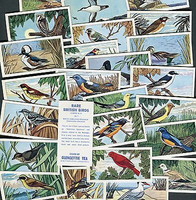 "Glengettie 1967 Set Of 25 ""rare British Birds"" Tea Cards"