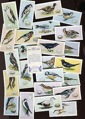 "Swettenham Tea 1958 Set Of 25 ""birds And Their Eggs"" Tea Cards"