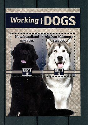 Nevis 2014 MNH Working Dogs 2v S/S Pets Alaskan Malamute Sled Dog Stamps