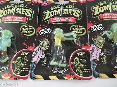 Grow your Own Brain Dead Zombies Glow In The Dark GROWS 600% Add Water lot 3
