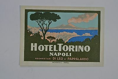 """Vintage Hotel Torino Napoli Italy Luggage Label Decal Tag - 4 1/4"""" x 3"""""""