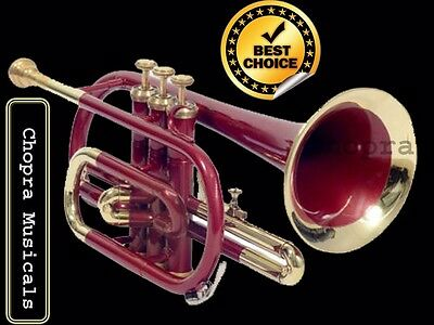 Cornet 2017 SALE Painted Professional 3V with Hard Case +Mouth Piece Free