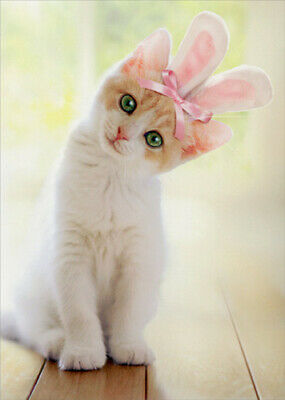 Kitten With Bunny Ears Cat Easter Card - Greeting Card by Avanti Press