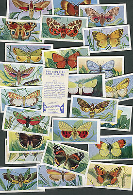 "Swettenham Tea 1958 Set Of 25 ""butterflies And Moths"" Tea Cards"