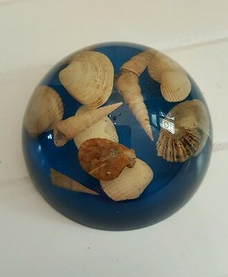 Vintage seascape shells paperweight ornament plastic perspex lucite resin