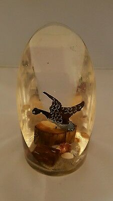 Vintage seascape shells bird paperweight ornament plastic perspex lucite resin