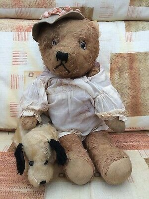 French teddy bear and friend
