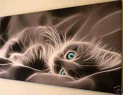 TURQUOISE EYES CAT CANVAS WALL ART PICTURE LARGE 18 x 32 inch  READY TO HANG