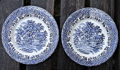 2 x W. H. Grindley Saffordshire Decorative side/salad  Plates - Country Style