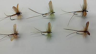 LOT of 6 MAY FLIES     best Flies for Pond , Lake     made in Canada