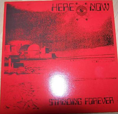 "Here & Now 'Standing Forever' 12"" single,GONG"