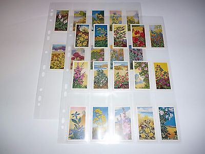 1961  Sweetule Products - Wild Flowers  trading card Set