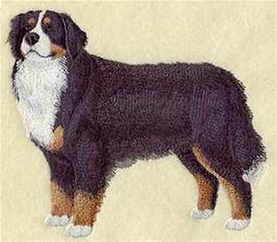 "Bernese Mountain Dog  Embroidered Patch ""6.7x5.8"""