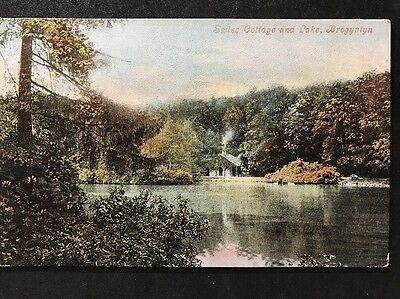 RP Vintage Postcard - Shropshire #B3 - Swiss Cottage And Lake, Brogyntyn 1906