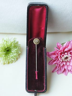 Victorian 9Ct Gold & Seed Pearl Stick Pin With Old Stick Pin Box