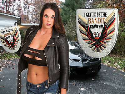 "PONTIAC   Trans Am "" I get to bed the Bandit"" cloth patch"