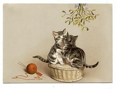 Helena Maguire 1894.chromo Sur Carton.cats.katze.cats.