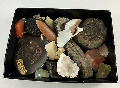 Box of fossils & minerals
