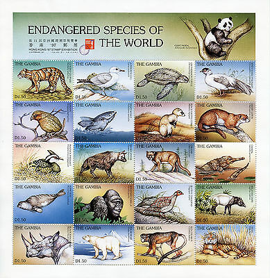 Gambia 1997 MNH Endangered Species 20v M/S Animals Pandas Turtles Birds Stamps
