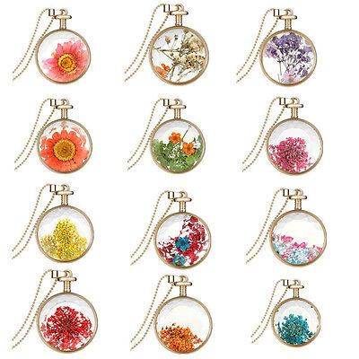 Dehydrated Flower Gold Plate Round Rare Natural Elegant Charm Pendant Necklaces!