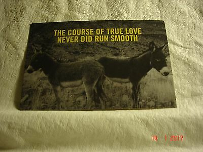 Avant Postcard The Course Of True Love Never Did Run Smooth, Cute Donkey, New