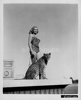 Orig 1953 GENE TIERNEY Leopard Print SWIMSUIT PIN-UP Portrait.. with LEOPARD!