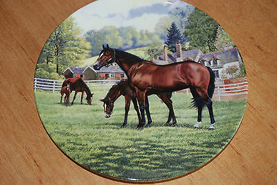 The Thoroughbred plate bradfoird exchange