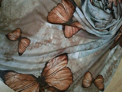 Ladies Stunning Large Size Butterfly Print Scarf. BNWT
