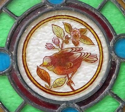 Antique stained glass window roundel with bird design - No 2