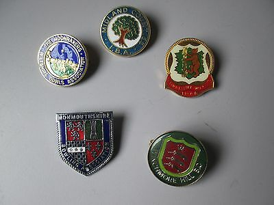 REDUCED Selection of 5 Bowling Club Enamel Badges