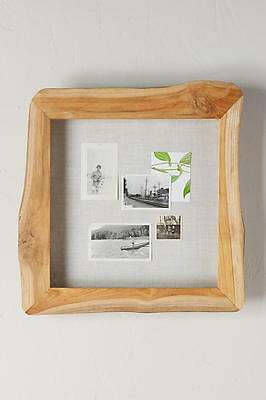 New Anthropologie Home Decor Live Edge Shadow Box Reclaimed Wood Frame