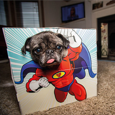 Animal Dog/Cat Pet Photobooth Superhero Novelty Fun Party Costume Frame Gift