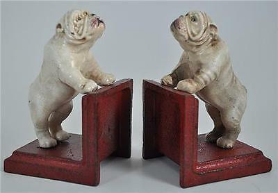 Bookends Cast Iron Bull Dogs White standing on a wall  READY to RUMBLE