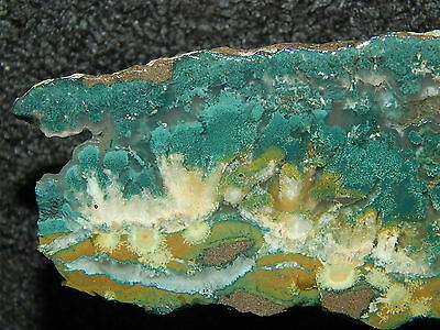killer Green Plume Agate lapidary cabbing slab Needle Peak Texas