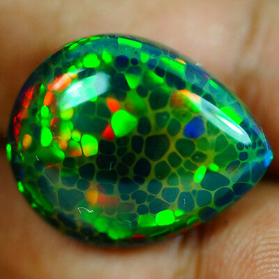 15.00ct  BEST EVER!! HONEY COMB! Superb Play of Rainbow! Museum! Welo Black Opal