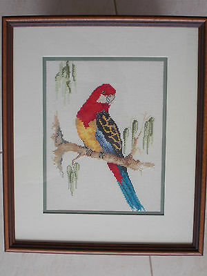 Completed Cross Stitched & Framed Work - Eastern Rosella