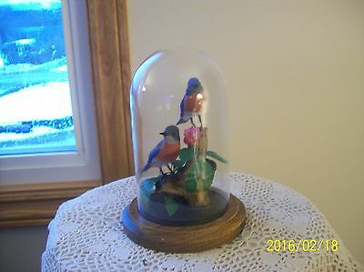 Artificial Terrarium Of Eastern Bluebirds Floral Glass Globe With Wood Base