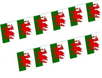 Welsh Flag Bunting Hanging Garland Wales St Davids Day 11 Pennants Per Length