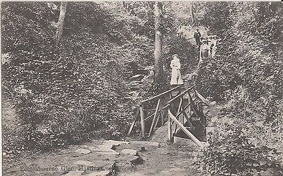 Vintage Postcard Ecclesbourne Glen, Hastings, Sussex  Day Out with People