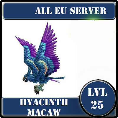 Hyacinth Macaw /  wow Battle Pet lvl 25  / All EU Server /