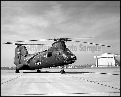USMC H-46 Sea Knight HMM-165 White Knights MCAS Tustin 1966 8x10 Photo