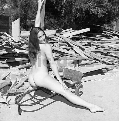 1960's Vogel Negative, foxy nude pin-up girl Becky Pearl outdoors, t910945