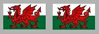 8 x WALES WELSH FLAG DECALS - VARIOUS SIZES