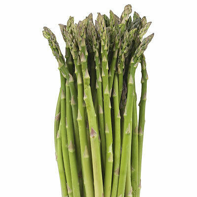 Asparagus Seeds Grow Your Own Culinary Delicacy